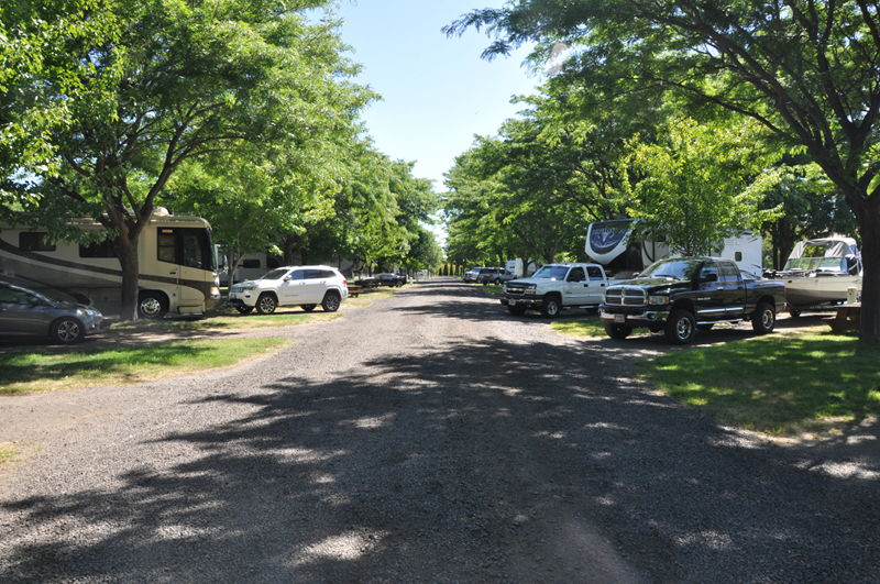 Another view of the campground at Peach beach RV park on the Columbia River on our full time RV adventure.