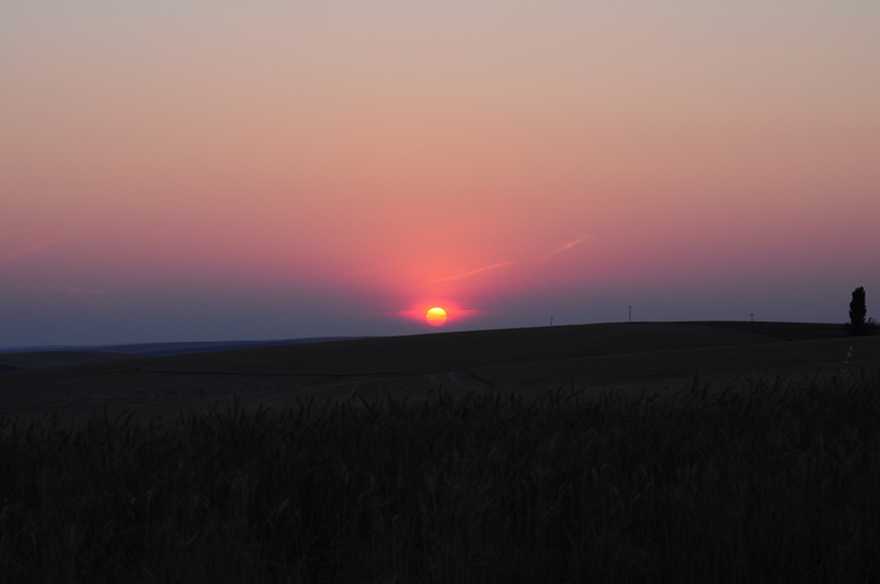 Extremely red sunset, forrest fires are buring everywhere around us as we are stationary living full time in the RV in WA state while working the wheat harvest.