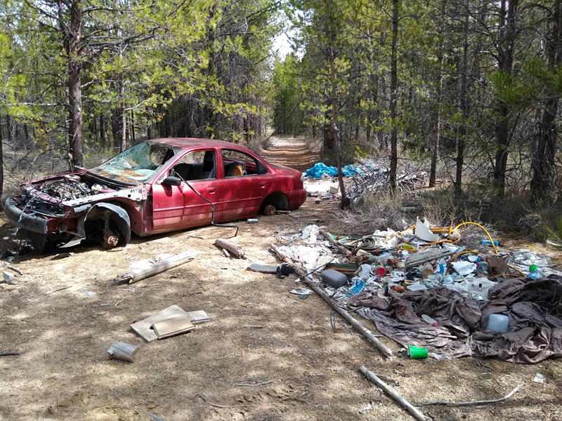 A car abandoned and stripped surrounded by tons of garbage out in the middle of the forest.