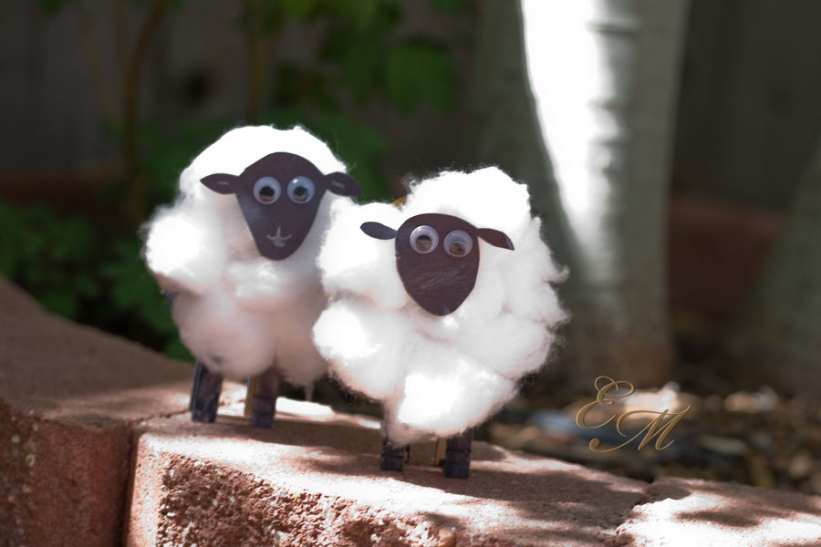 Cotton Ball Sheep Activity