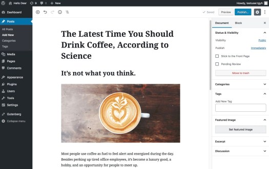 WordPress with Gutenberg editing experience