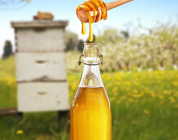 Honey-Wine