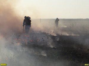 Гасене на пожара в Шапсугския язовир.