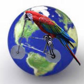 Проучване на световния пазар