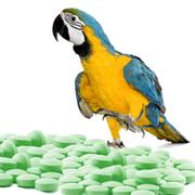 pharma XS