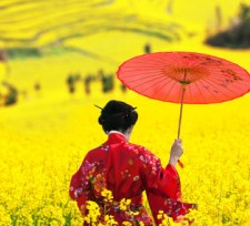 Japan festival  XS