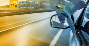 EVS Translations LinkedIN