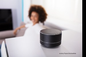 Smart Speaker – Word of the day – EVS Translations