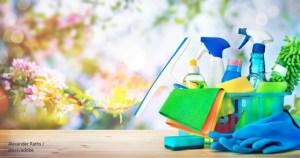 Пролетно почистване / Spring Cleaning – Дума на деня – EVS Translations