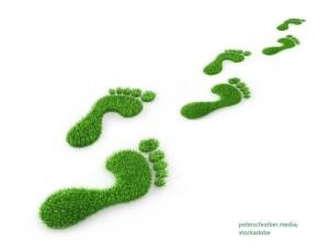 Eкологичен отпечатък / Ecological Footprint – Дума на деня – EVS Translations