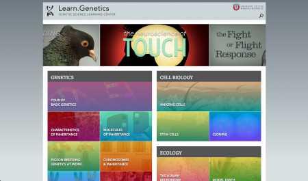 Genetic Science Learning Center (University of Utah) - http://learn.genetics.utah.edu/