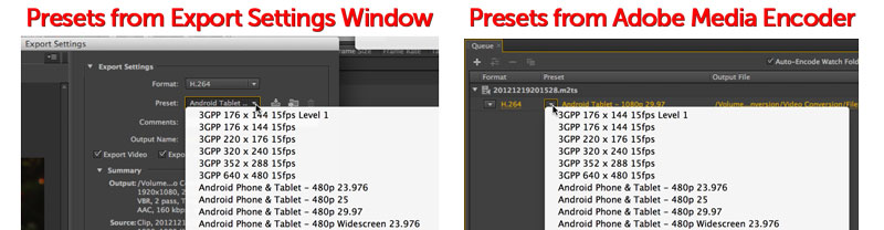 You can choose the Preset from Adobe Media Encoder or from the Export Settings Window.