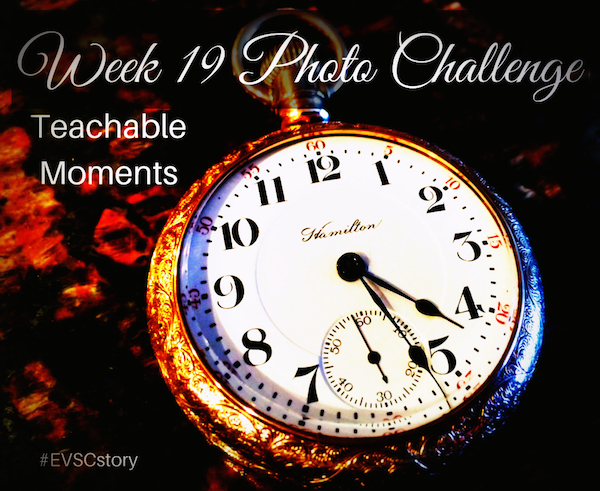 Week 19 Photo Challenge Final copy