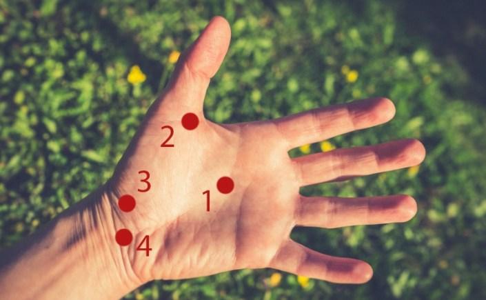 punkty marma dłoń