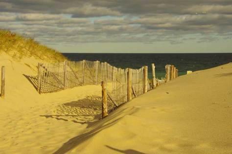 Life's a beach .........