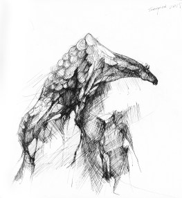 Szkic - Hippokamp
