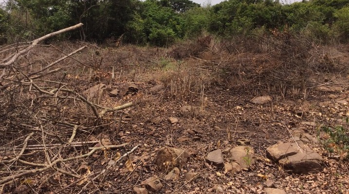 2 Plots of Land For Sale in Cantonments