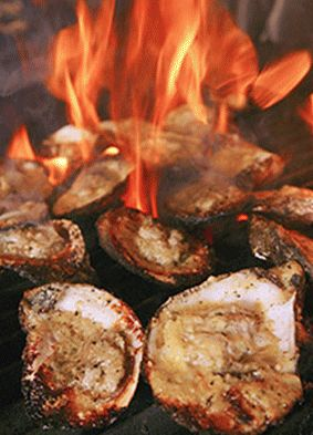 dragos oysters fire