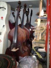 Basses at the rental shop