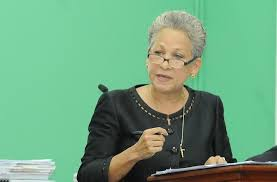 Hanna-Martin slams government over access to social services
