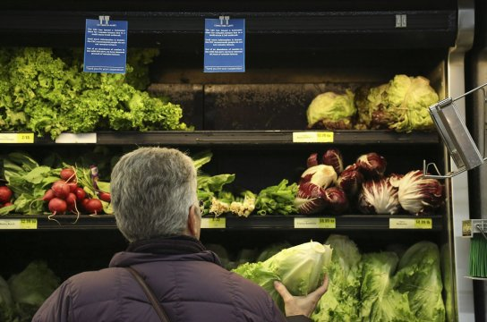 BAHFSA: No E. coli linked to romaine lettuce harvested outside California