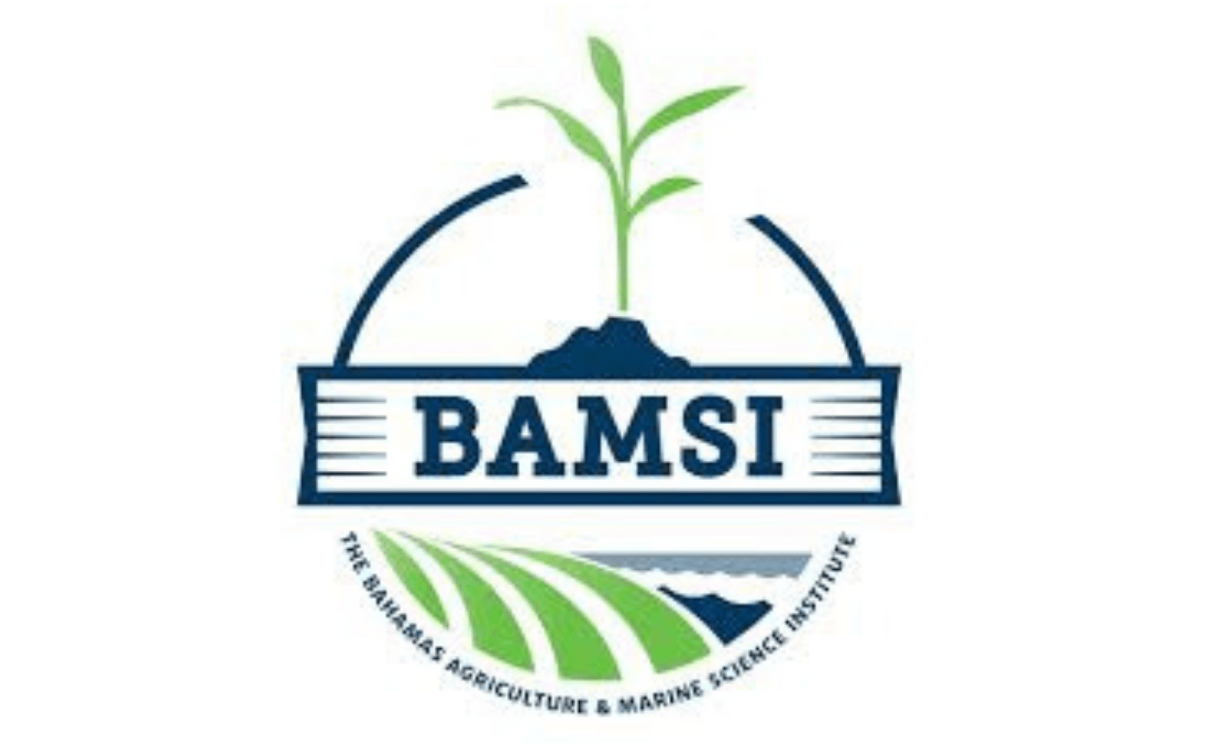 BAMSI expands educational offering with distance learning
