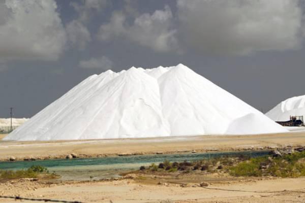 Morton Salt union to turn up the heat