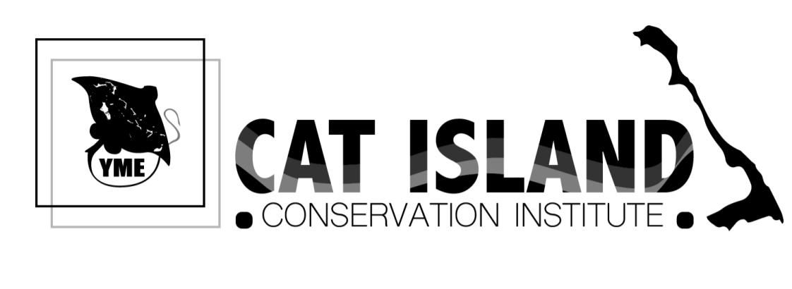 Cat Island institute lands UNESCO hurricane workshop
