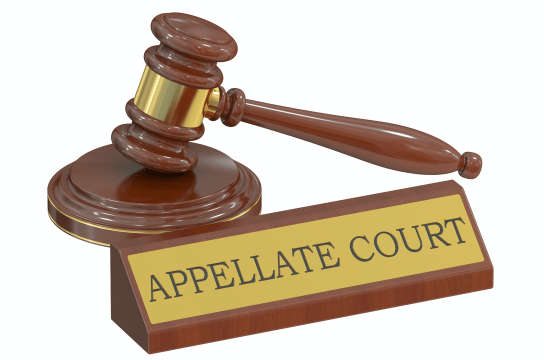 All five Court of Appeal judges will preside over appeal of citizenship ruling