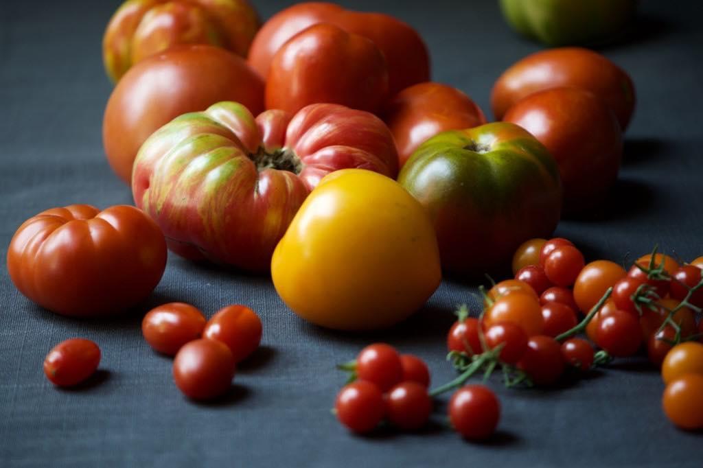 Tomatoes Recipe Food Sauce