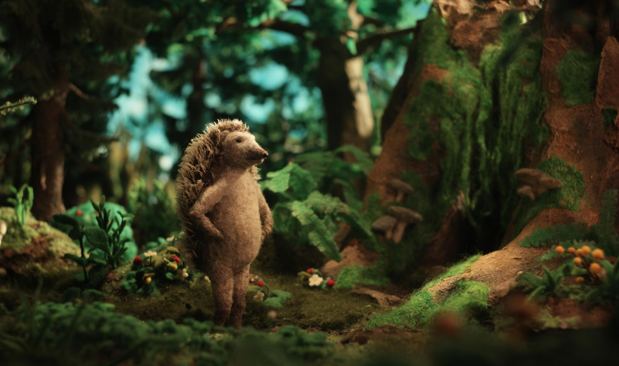Hedgehog Home Sundance Animation