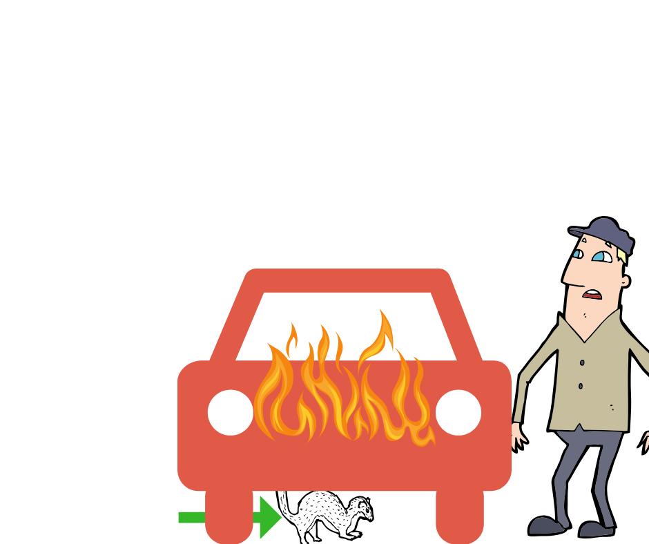 rache an ex freund - auto tunen