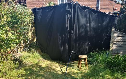 Tent Back