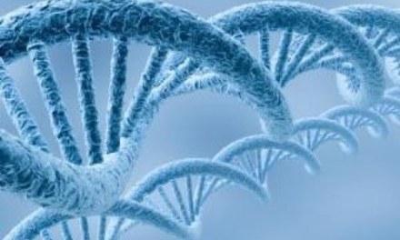 Selección de Antecedentes JTP Transitorio – Depto. Biología