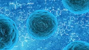 Charlas sobre tratamiento de enfermedades con células madre
