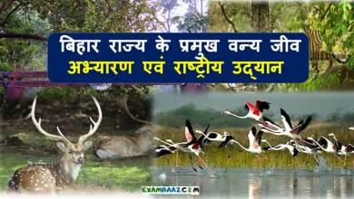 Photo of National Parks In Bihar   Wildlife sanctuary in Bihar   Bihar GK
