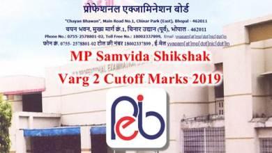 Photo of MP Samvida Shikshak Varg 2 Cut off 2019 | Subject Wise*