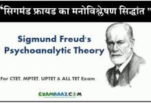 Photo of सिगमंड फ्रायड का मनोविश्लेषण सिद्धांत: Sigmund Freud Theory In Hindi