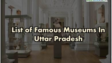 Photo of List of Major Museums In Uttar Pradesh || उत्तर प्रदेश के प्रमुख संग्रहालय
