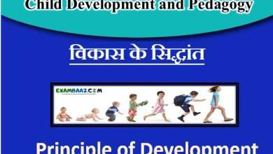 Photo of Principle of Development of Children    विकास के सिद्धांत