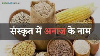 संस्कृत में अनाज (अन्नो) के नाम || All Grains Name In Sanskrit Language