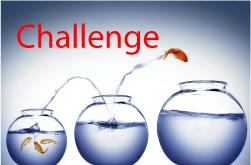 nu degree result challenge