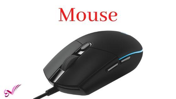 माउस (Mouse)