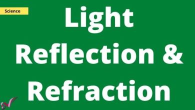 Photo of Light Reflection & Refraction Question & Answer