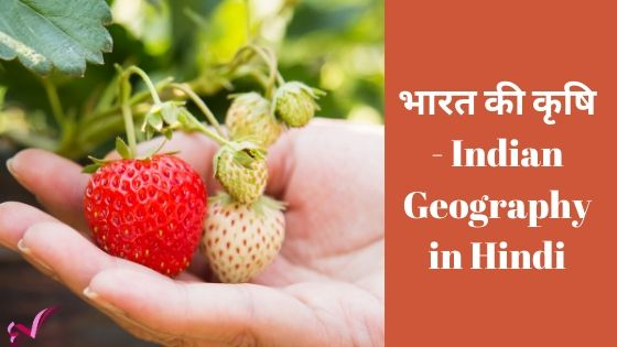 भारत की कृषि - Indian Geography in Hindi