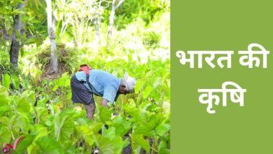 Photo of भारत की कृषि