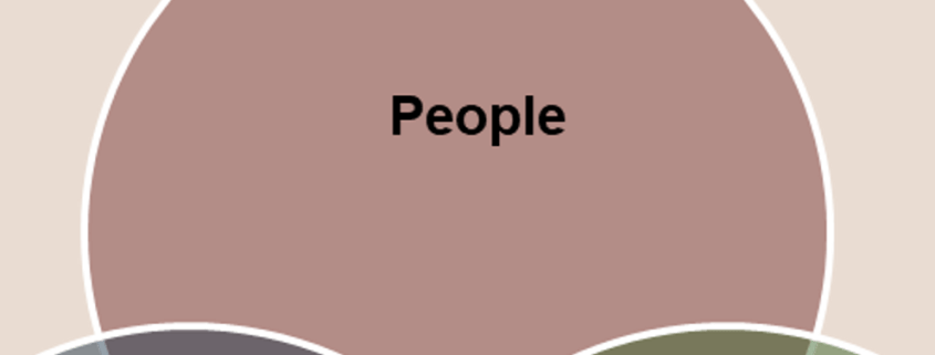 PeopleProcess