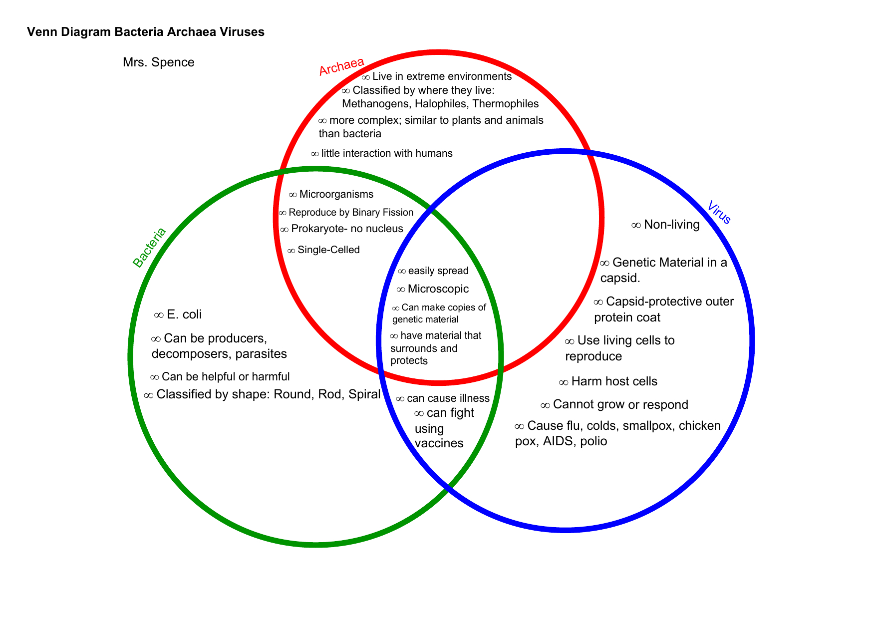 Bacteria And Virus Venn Diagram