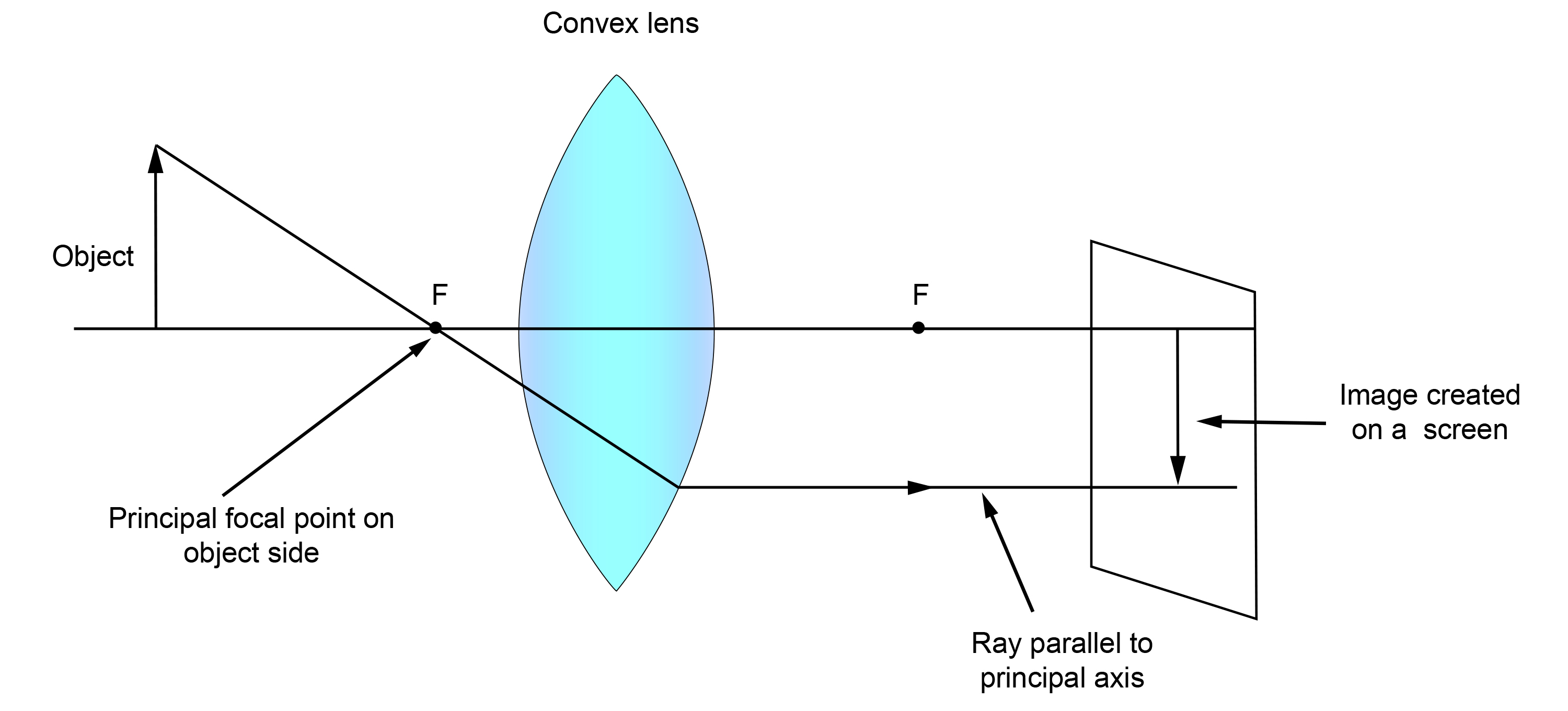 Lens Ray Diagrams