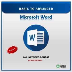 MS Word Video Course